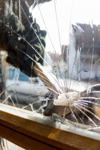 Installing security film to your storefront protects you from natural disasters and intruder break-ins.