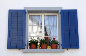 window with blue shutters and potted plants